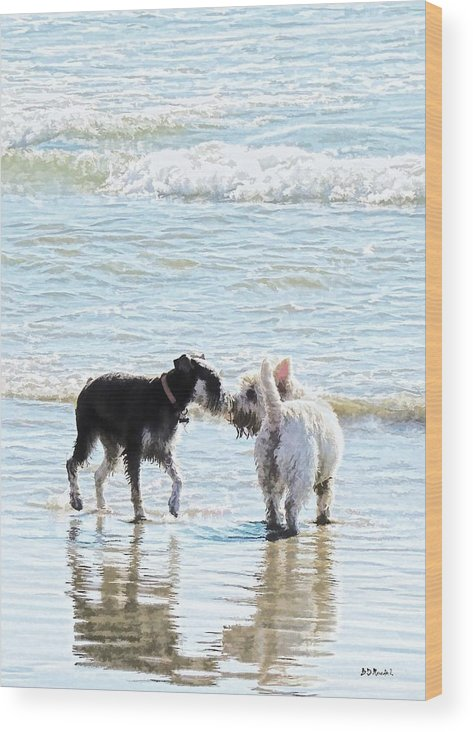 Dogs Wood Print featuring the photograph Sweet Meet by Brian D Meredith