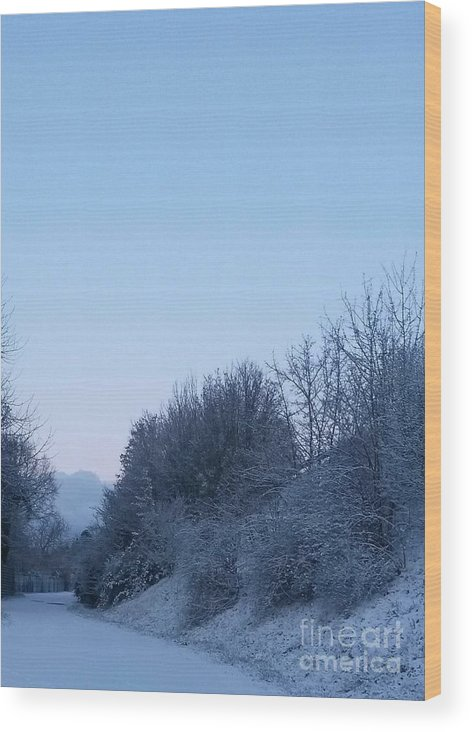 Winter Wood Print featuring the photograph Beautiful Day by Leonore VanScheidt