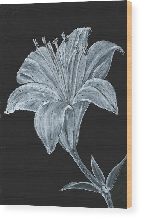 Lily Wood Print featuring the painting Black And White Asiatic Lily by Richard Bulman