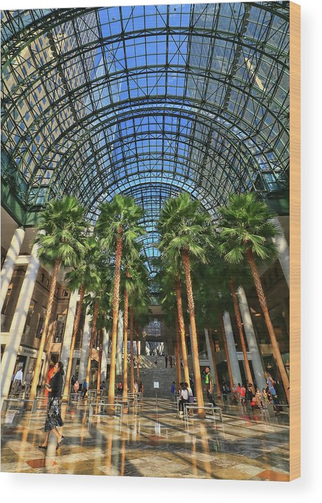 Atrium Wood Print featuring the photograph Brookfield Place Atrium - N Y C # 2 by Allen Beatty