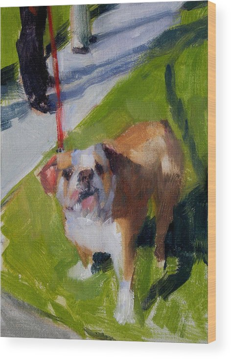 Bulldogs Wood Print featuring the painting Buddy On A Red Leash by Merle Keller