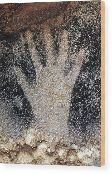 Cave Wood Print featuring the photograph Cave Art: Pech Merle by Granger