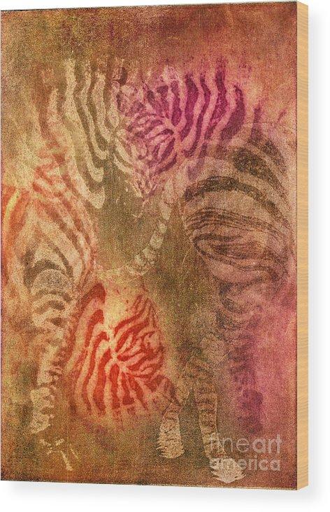 Animal Wood Print featuring the photograph Colrfull Donkies by Iglika Milcheva-Godfrey