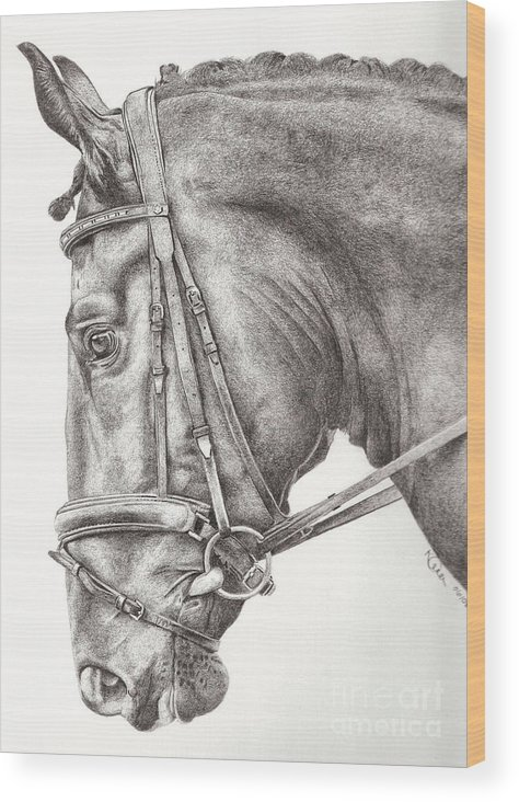 Horse Wood Print featuring the drawing Dobbin by Karen Townsend