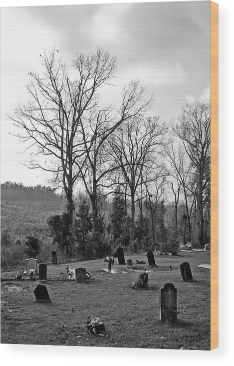 Wood Print featuring the photograph Graves by Jason Rossi