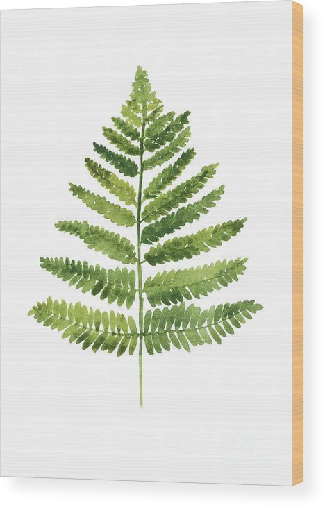 Ferns Wood Print featuring the painting Green Ferns Watercolor Poster by Joanna Szmerdt