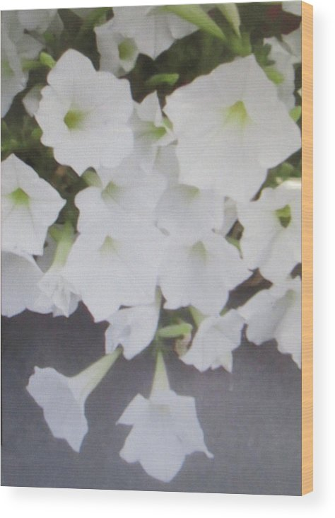 Photography Wood Print featuring the painting Greeting Card/sympathy Card by Glenda Crigger