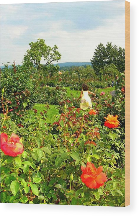 Figure Wood Print featuring the photograph Hershey Garden by Caroline Urbania Naeem