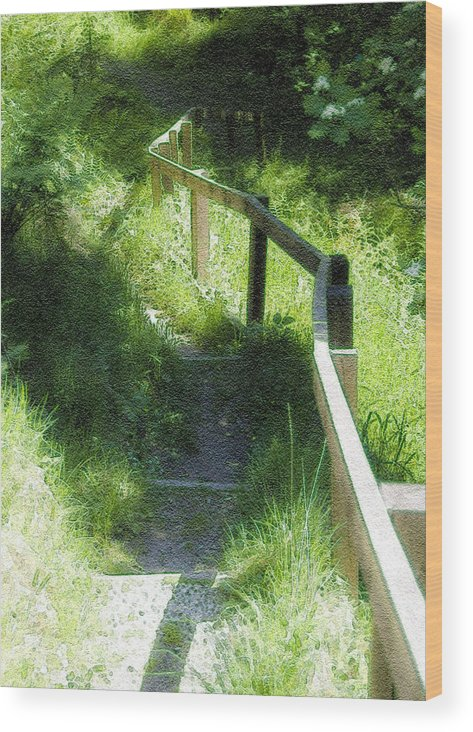 Branch Wood Print featuring the photograph In The Forest by Svetlana Sewell