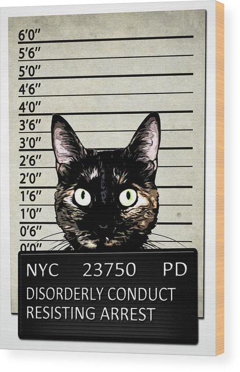 Cat Wood Print featuring the mixed media Kitty Mugshot by Nicklas Gustafsson