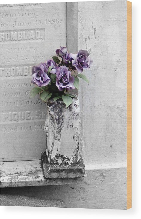 Roses Wood Print featuring the photograph Lafayette No One Purple Roses by Heather S Huston