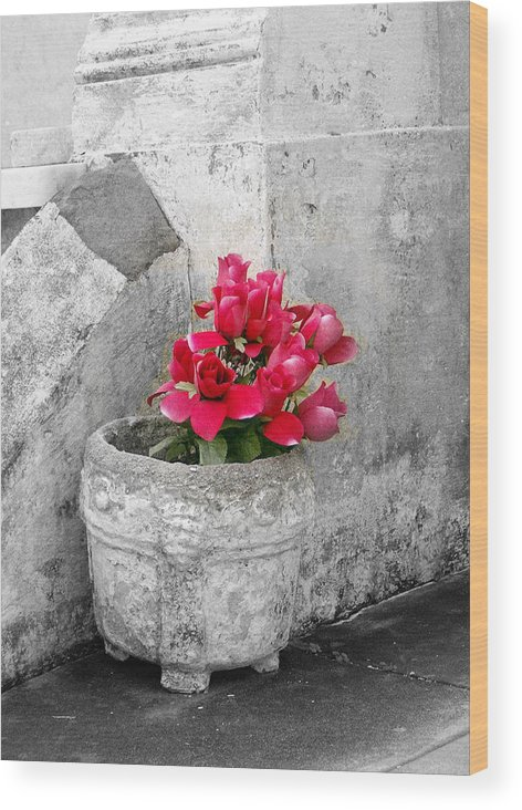 Flowers Wood Print featuring the photograph Layfayette No One Red Roses by Heather S Huston
