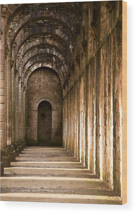 Castle Wood Print featuring the photograph Light And Shadows 1 by Svetlana Sewell