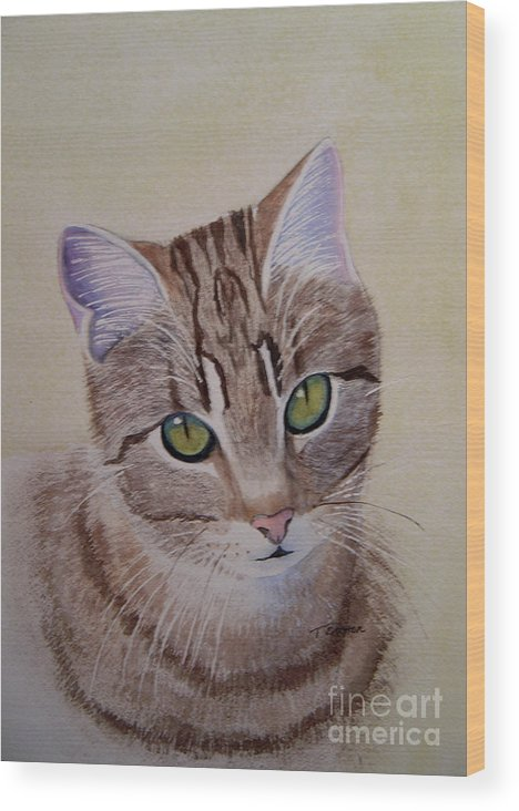 Animal Wood Print featuring the painting Little Zeke Stray Cat Series One by Teresa Boston