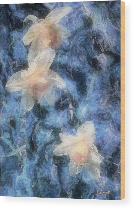 Daffodils Wood Print featuring the painting Nighttime Narcissus by RC DeWinter