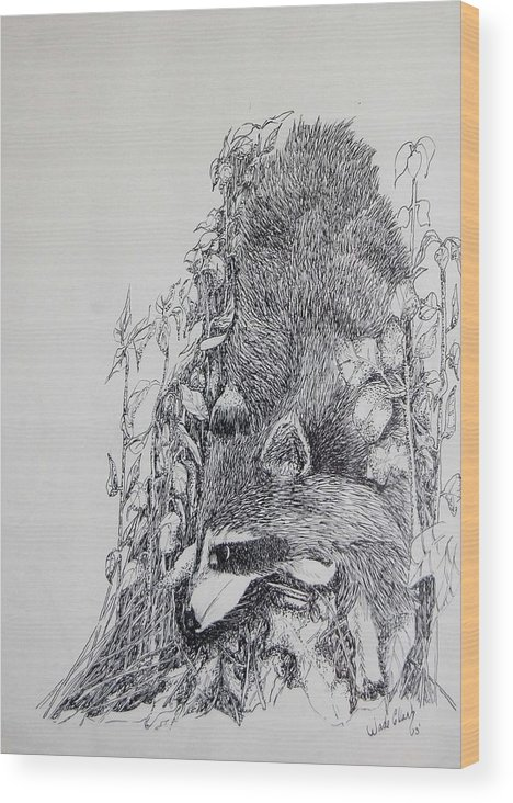 Animals Wood Print featuring the drawing Out Of The Woods by Wade Clark