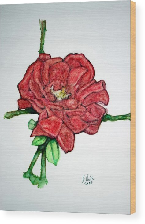 Rose Wood Print featuring the drawing Rose Study No 1 by Edward Ruth
