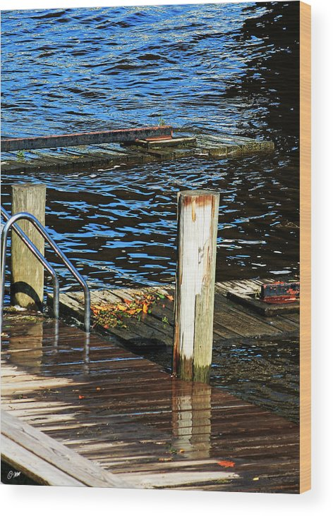 Dock Water Flood Serene Pretty Nature Swim Wood Print featuring the photograph The Dock by Dawn M Brewer