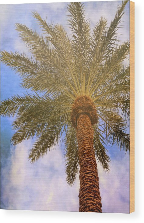 Vegas Wood Print featuring the photograph View From The Pool by JAMART Photography