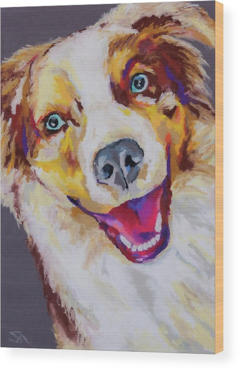 Australian Shepard Wood Print featuring the painting Aussie by Stephen Anderson