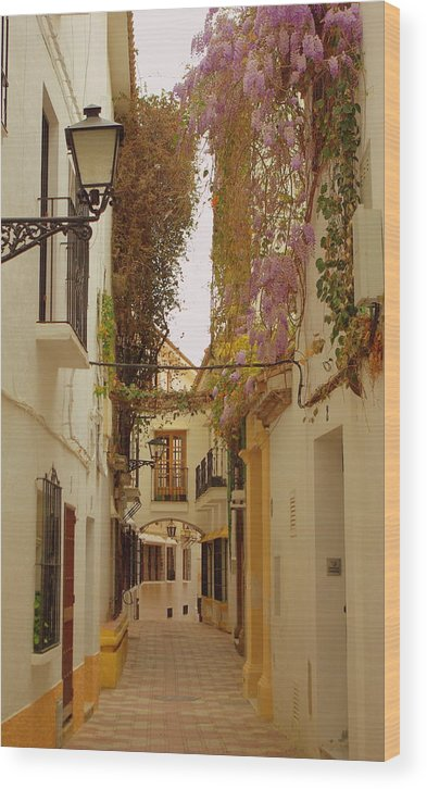 Spain Wood Print featuring the photograph Wisteria Lane by Iain MacVinish