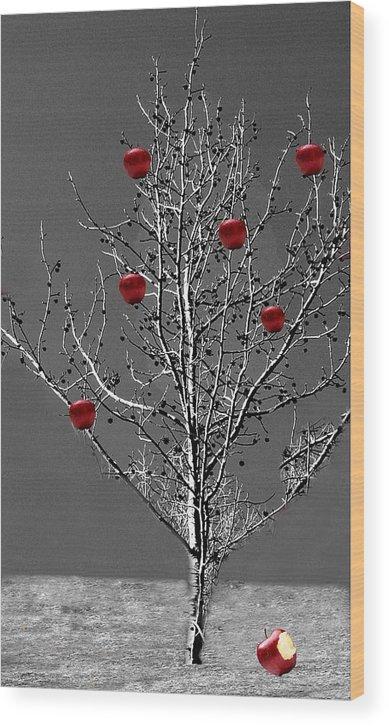 Tree Wood Print featuring the digital art Apple Tree by Kenna Westerman