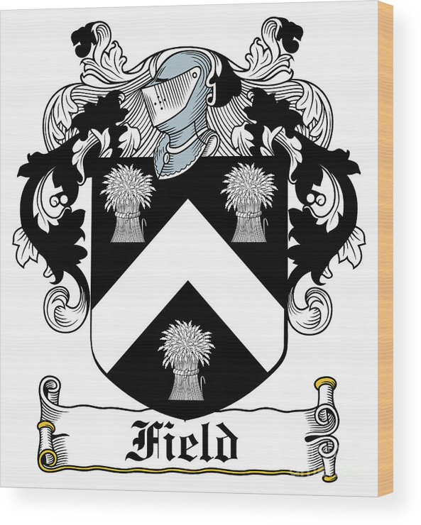 Field Wood Print featuring the digital art Field Coat Of Arms I Irish by Heraldry