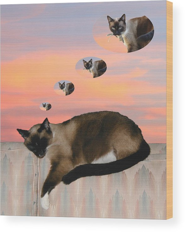 Siamese Cat Wood Print featuring the photograph My Favorite Dream - Mouse Hunt by Her Arts Desire