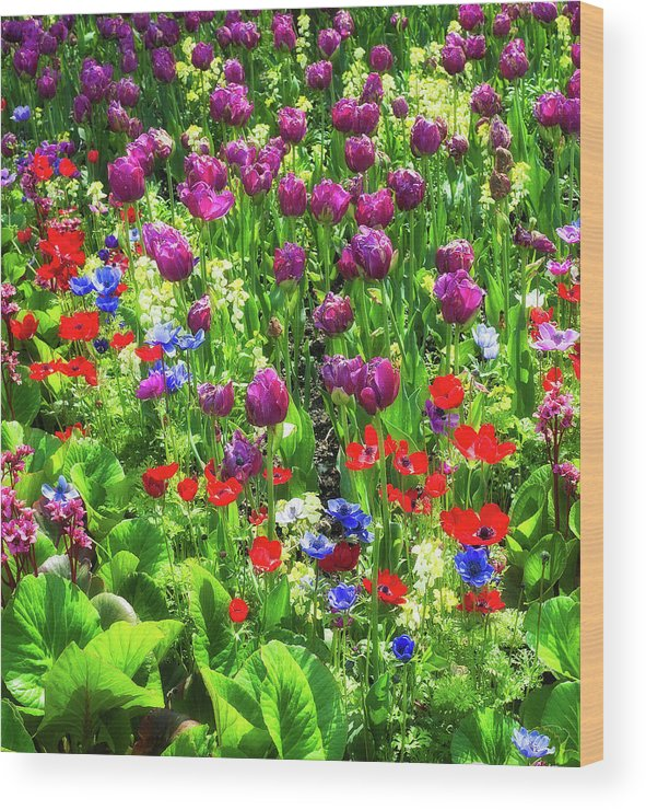 Vancouver Wood Print featuring the photograph It Takes A Mix To Make A Garden by Paul W Sharpe Aka Wizard of Wonders