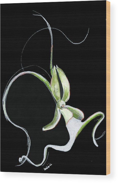 Floral Flower Dance Orchid Wood Print featuring the print Dance Of The Ghost Orchid by Carliss Mora