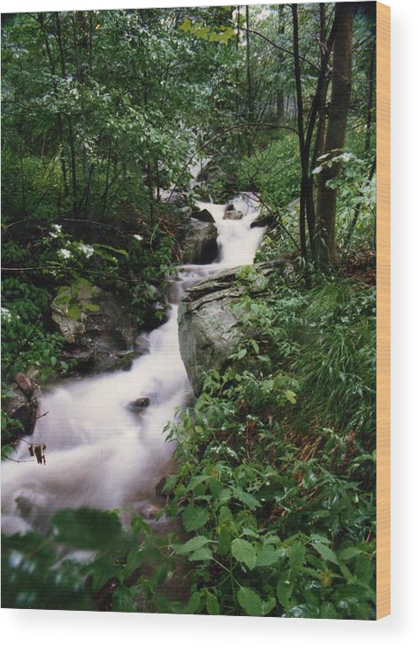 Photography Wood Print featuring the photograph Watershed Gray by Cynthia Ann Swan