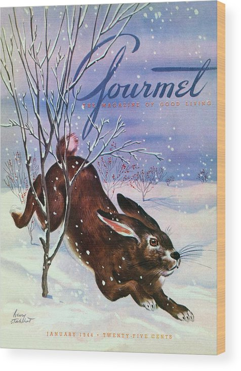 Illustration Wood Print featuring the photograph Gourmet Cover Of A Rabbit On Snow by Henry Stahlhut