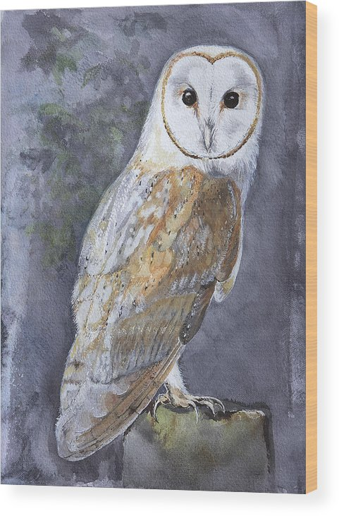 Nature Wood Print featuring the painting Large White Barn Owl by Kathryn Dalziel
