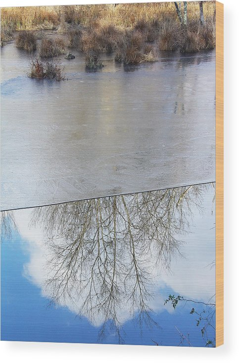 Fine Arts Greeting Cards Wood Print featuring the photograph Nature Draws Its Line With Its Ice by Terrance DePietro