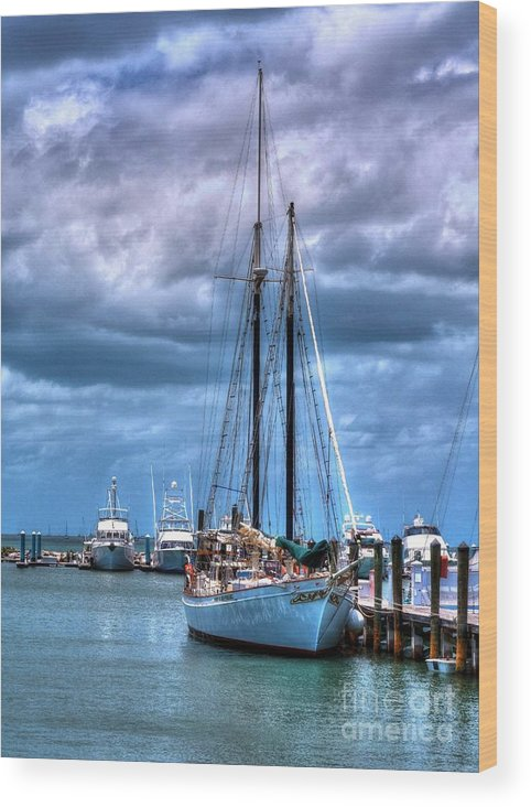 Sail Boats Wood Print featuring the photograph Not For Sail by Mel Steinhauer