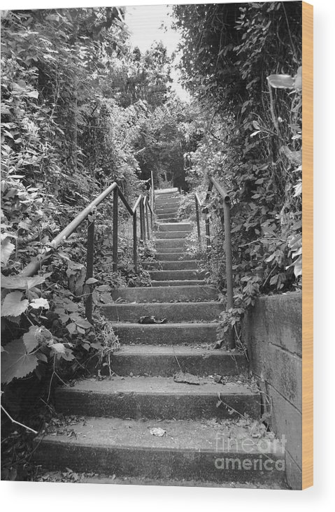 Black And White Wood Print featuring the photograph Steps by Lucas Rigdon