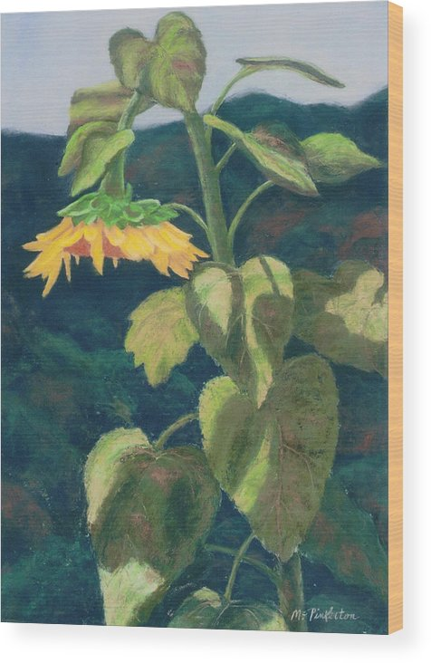 Flower Wood Print featuring the painting Sunflower by Miriam Pinkerton