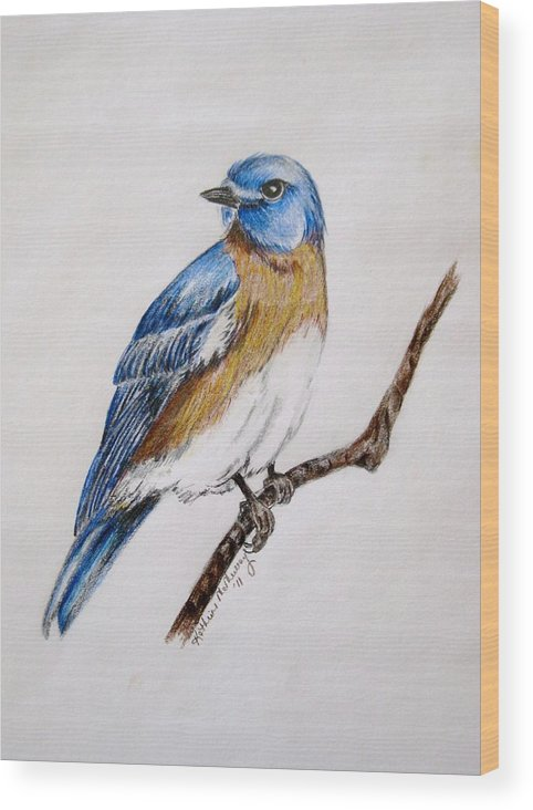 Bluebird Wood Print featuring the drawing Bluebird Guardian by Kathrine McMurray