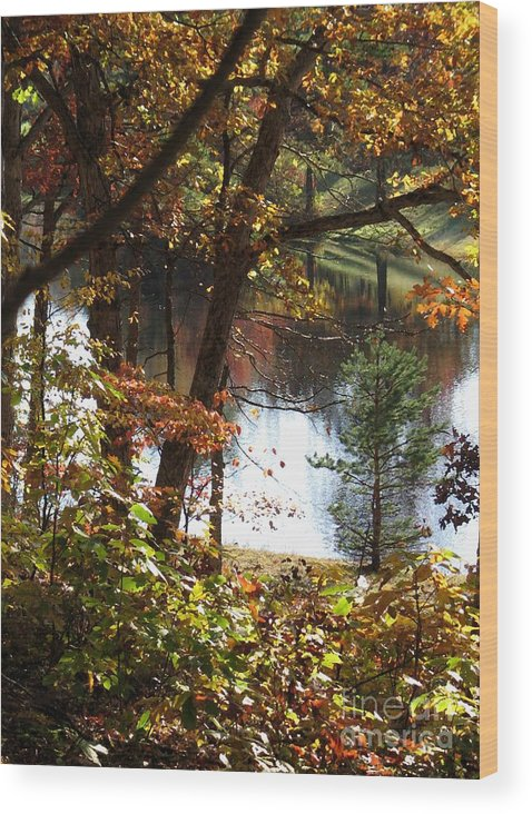 Autumn Wood Print featuring the digital art Autumn Lake With Oil Painting Effect by William Kuta