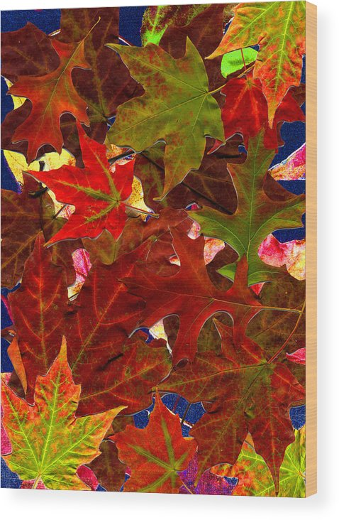 Collage Wood Print featuring the photograph Autumn Leaves by Nancy Mueller