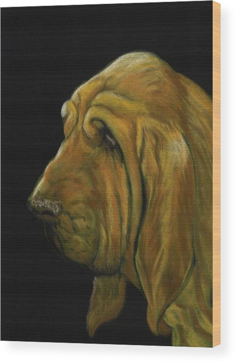 Bloodhound Wood Print featuring the painting Bloodhound by Charlotte Yealey