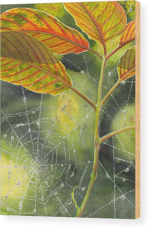 Web Wood Print featuring the painting Dew Drop by Catherine G McElroy
