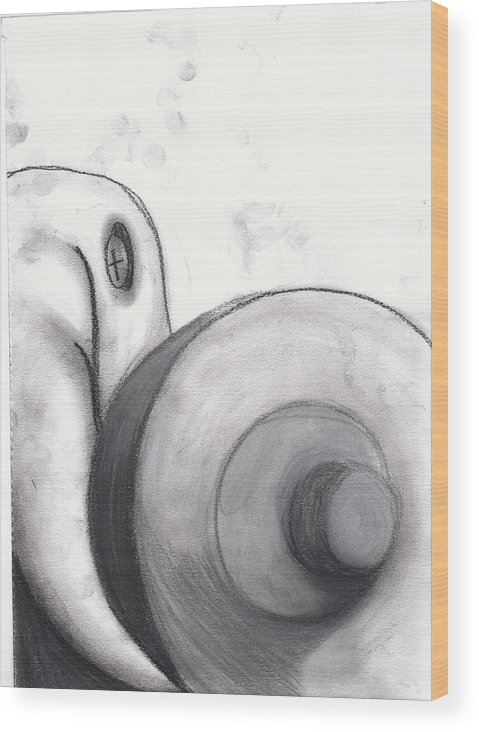 Still Life Wood Print featuring the drawing Distorted Series 1 by Dan Fluet