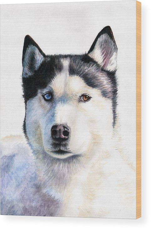Dog Wood Print featuring the painting Husky Blue by Nicole Zeug