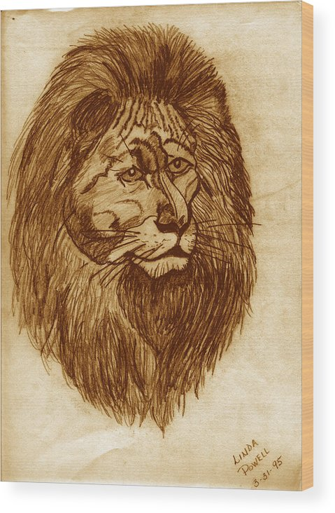 Drawing Wood Print featuring the digital art Lion by Linda Powell