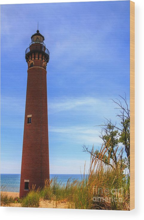 Kathryn Smith Wood Print featuring the photograph Little Sable Point Lighthouse by Kathryn Smith