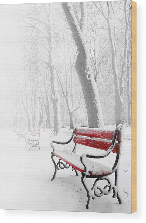 Beautiful Wood Print featuring the photograph Red Bench In The Snow by Jaroslaw Grudzinski