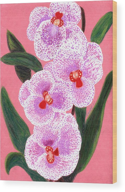 Floral Pink Orchid Wood Print featuring the drawing Spotted Orchid Against A Pink Wall by Carliss Mora
