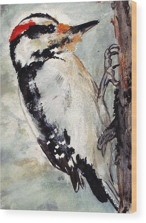 Hairy Woodpecker Wood Print featuring the painting Tappity Tap by Debra Sandstrom