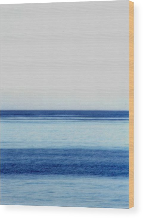 Landscape Wood Print featuring the photograph Vertical Number 14 by Sandra Gottlieb
